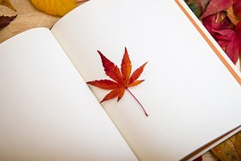 maple-leaf-638022__180